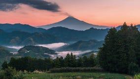 Mt Fuji med fältet för grönt te på soluppgång i Shizuoka arkivfilmer
