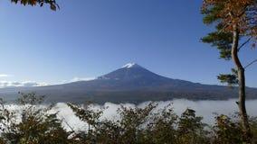 Mt Fuji med nedgången färgar i JapanMt Fuji och Cherry Blossom på sjön Kawaguchiko arkivfilmer