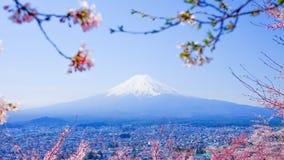 MT Fuji met Cherry Blossom (Sakura) in de Lente, Fujiyoshida, Ja stock fotografie
