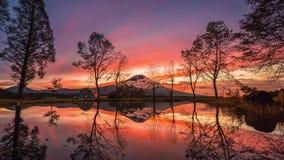 MT Fuji met grote bomen en meer bij zonsopgang in Fujinomiya stock footage