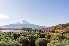 Mt.Fuji  in the morning at Lake Kawakuchi. Yamanashi, Japan - November 22,2014 : View of Mt.Fuji  in the morning at Lake Kawakuchi, Yamanashi,Japan Royalty Free Stock Image