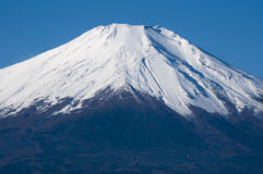 Mt. Fuji Royalty Free Stock Image
