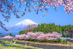Mt Fuji na mola imagens de stock royalty free