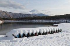 Mt Fuji nell'inverno, Giappone Fotografie Stock Libere da Diritti