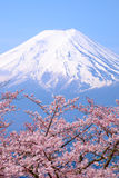 Mt Fuji och Cherry Blossom i japan för Japan vårsäsong arkivfoton