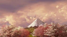 Mt Fuji och körsbärsröd blomning på solnedgången eller soluppgång 4K stock video
