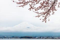 Mt fuji och rosa körsbärsröd blomning i Japan arkivfoton