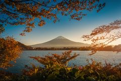 Mt. Fuji over Lake Kawaguchiko with autumn foliage at sunset in royalty free stock image
