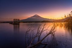 MT Fuji over Meer Kawaguchiko met dode boom bij zonsondergang in Fujik royalty-vrije stock foto's
