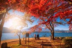 MT Fuji over Meer Kawaguchiko met van het de herfstgebladerte en paar liefde bij zonsopgang in Fujikawaguchiko, Japan stock afbeelding