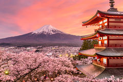 Mt. Fuji and Pagoda in Spring. Fujiyoshida, Japan at Chureito Pagoda and Mt. Fuji in the spring with cherry blossoms Stock Images