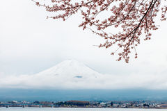 Mt fuji and pink cherry blossom in Japan Stock Photos