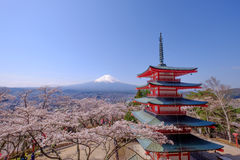Mt. Fuji with red pagoda in autumn, Fujiyoshida, Japan. With sakura Stock Photography