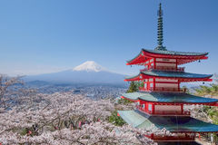 Mt. Fuji with red pagoda in autumn, Fujiyoshida, Japan. With sakura Stock Images