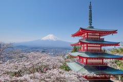 Mt. Fuji with red pagoda in autumn, Fujiyoshida, Japan. With sakura stock images