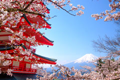 Mt. Fuji with red pagoda in Spring, Fujiyoshida, Japan Stock Photo
