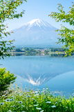 Mt.Fuji Stock Photos