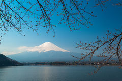 Mt Fuji rises above Lake Kawaguchi Royalty Free Stock Photos