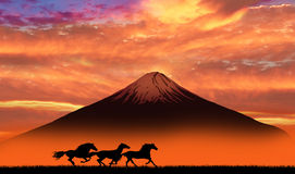 Mt. FUJI with running horses Royalty Free Stock Image