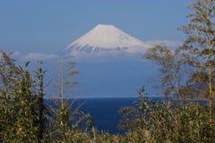 Mt.Fuji. Seen from Izu Peninsula,Shizuoka Prefecture Japan stock photos