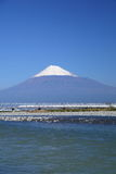 Mt. Fuji and Shinkansen Stock Image