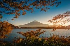 Mt Fuji sobre el lago Kawaguchiko con follaje del otoño en la puesta del sol adentro imagen de archivo libre de regalías