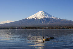 Mt Fuji view from the lake with a geese and reflection Royalty Free Stock Photography