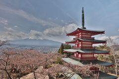 Chureito Pagoda at Arakura Sengen Shrine. Mt Fuji viewed from behind Chureito Pagoda at 2016 Royalty Free Stock Photography