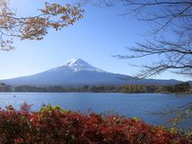 Mt. Fuji Viewed Between Fall Leaves and Tree Branches. Mt. Fuji, Japan's famous mountain, viewed with red and yellow leaves Royalty Free Stock Images