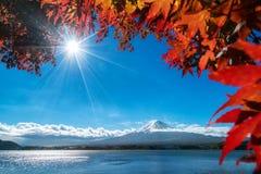 Mt Fuji w jesień widoku od jeziornego Kawaguchiko Obraz Royalty Free