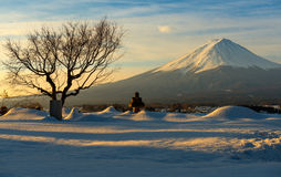Mt Fuji with Warm Morning Light in Winter, Japan Royalty Free Stock Photography
