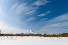 Mt Fuji in Winter, Japan Royalty Free Stock Photo