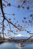 Mt Fuji y Cherry Blossom Foto de archivo libre de regalías