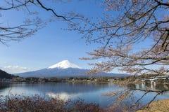 Mt Fuji y Cherry Blossom Fotos de archivo
