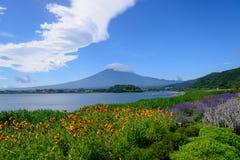 Mt Fuji y lavanda en la orilla del lago de Kawaguchi Imágenes de archivo libres de regalías