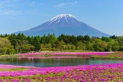 Mt Fuji z niebieskim niebem zdjęcie royalty free