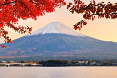 Mt. Fujiin Autumn Royalty Free Stock Photo