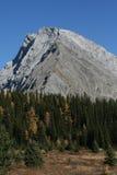 Mt Galatea, Schubstörungen zeigend Lizenzfreie Stockfotos