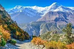 Mt Gangapurna :安纳布尔纳峰电路艰苦跋涉, Manang -尼泊尔 免版税图库摄影