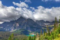 MT-Gletscher-nationale Park--Grinnellgletscherspur Lizenzfreies Stockbild