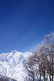 Mt. Goryudake, Nagano Japan. Mt. Goryudake, snow covered mountain in nagano japan Stock Photos