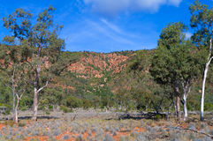 Mt Gunderbooka Stock Photos