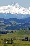 Mt-Haube im Frühjahr stockfotografie