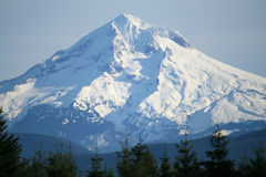 Mt-Haube Oregon Stockbilder