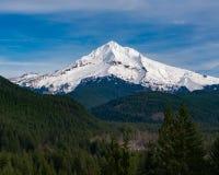 Mt-Haube von Lolo Pass in Oregon 2 Lizenzfreie Stockfotografie