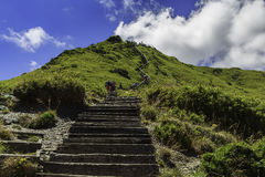 Mt Hehuan Eagle rede i Taiwan Arkivfoto