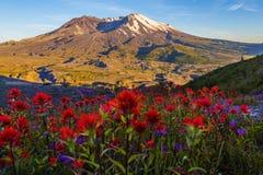 Mt圣Helens 库存照片