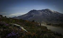 Mt圣Helens 免版税图库摄影