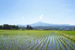 Mt.Himekami en blauwe hemel Stock Foto