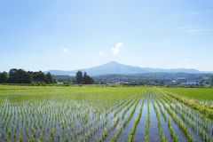 Mt.Himekami und blauer Himmel Stockfoto
